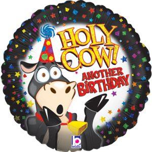 holycow.ballon